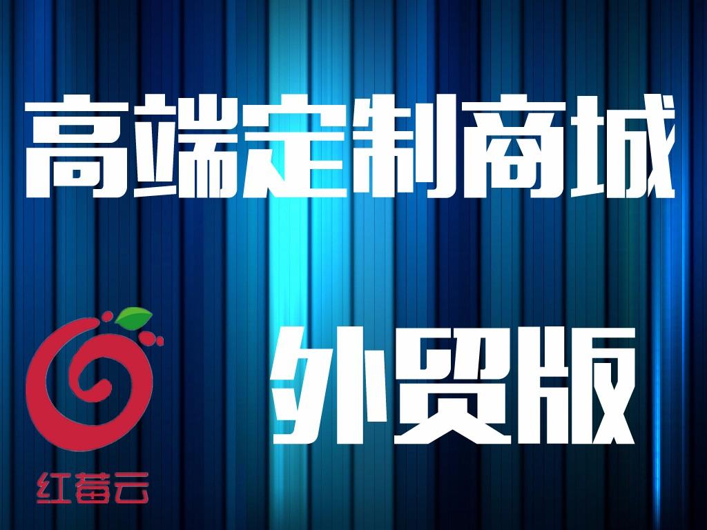 广州红莓云定制型单用户外贸版商城