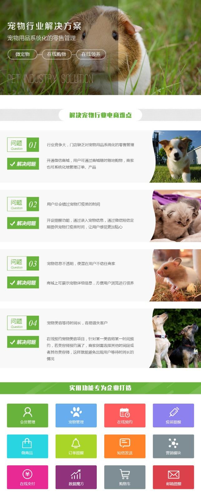 宠物网站定制