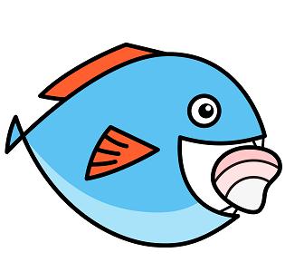 Choerodon猪齿鱼