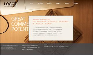金融行业09模板网站