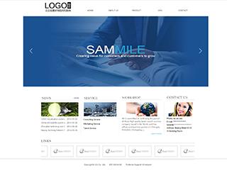 咨询行业a30模板网站