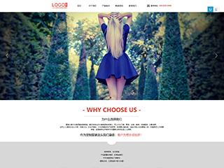 服饰行业329模板网站