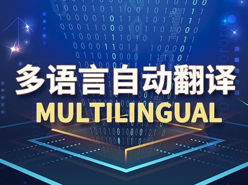 多语言自动翻译