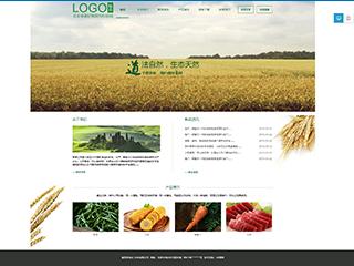 食品行业a50模板网站