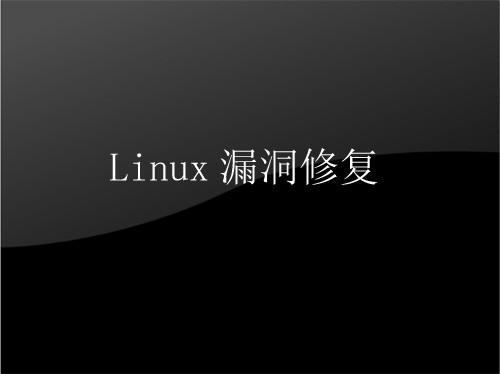 Linux漏洞修复 漏洞清除 被黑恢复 数据恢复 网站修复
