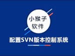 配置SVN版本控制系统