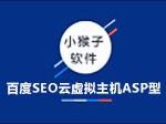 百度SEO云虚拟主机ASP型