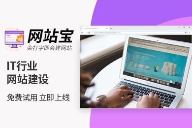 智能模板 IT行业网站建设 网站宝