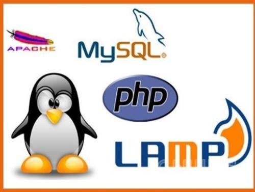 lamp_php7_1