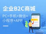【B2C商城系统】电商网站开发 高端定制商城 开源商城